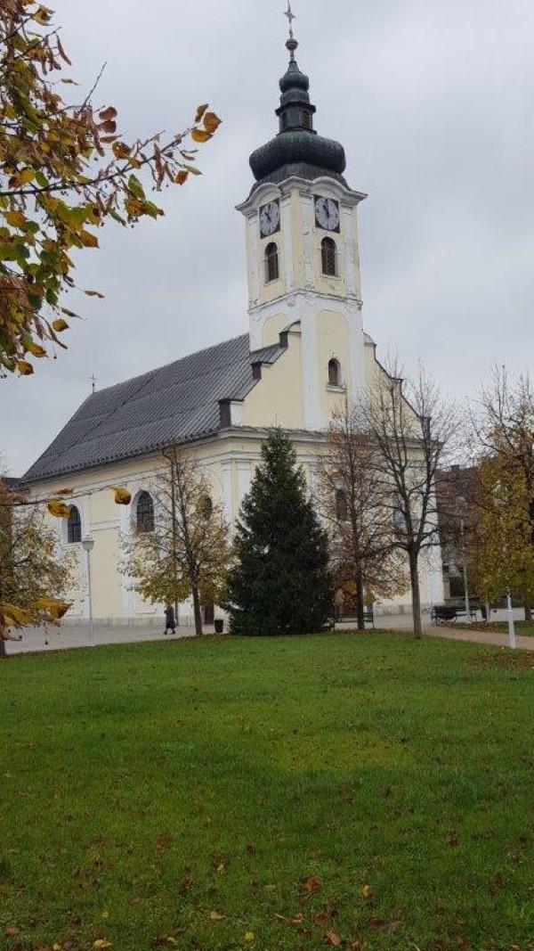 Postavljen bor za Advent
